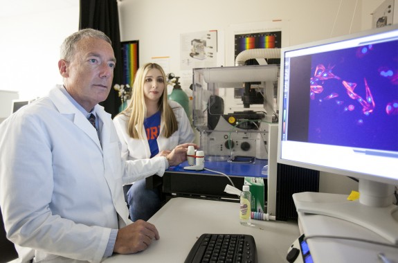 Dr. Dan Brown, left, and bioscientist Dina Demcovitz look view an image showing the mycoplasma bacteria inside a dog's brain.