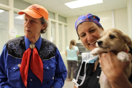 Dr. Temple Grandin stopped in to visit the college's Veterinary Community Outreach program on Sept. 25 following a tour of the UF Small Animal Hospital. Shown with her is Dr. Natalie Isaza, right.