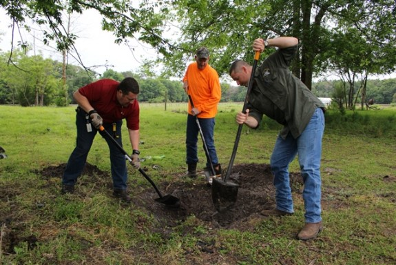 John Haven, Josh Fleming and off-duty Alachua County Sheriff's Office deputy Brandon Jones are shown digging a hole large enough to allow access for a rescuer and safe extrication of the fallen calf. (Photo by Brandi Phillips)