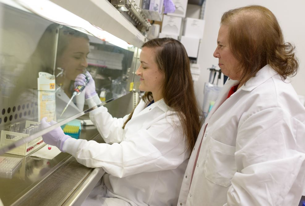 Dr. Mary Brown and Marissa Valentine-King looking under the hood at mycoplasma samples.