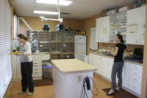 Two students measure a treatment room at a private veterinary practice.