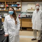 Dr. Leah Reznikov and Dr. David Ostrov in Reznikov's laboratory. The two are collaborating in a new study aimed at identifying potential drugs for use in preventing or treating coronavirus infection. (Photo by Jesse Jones)