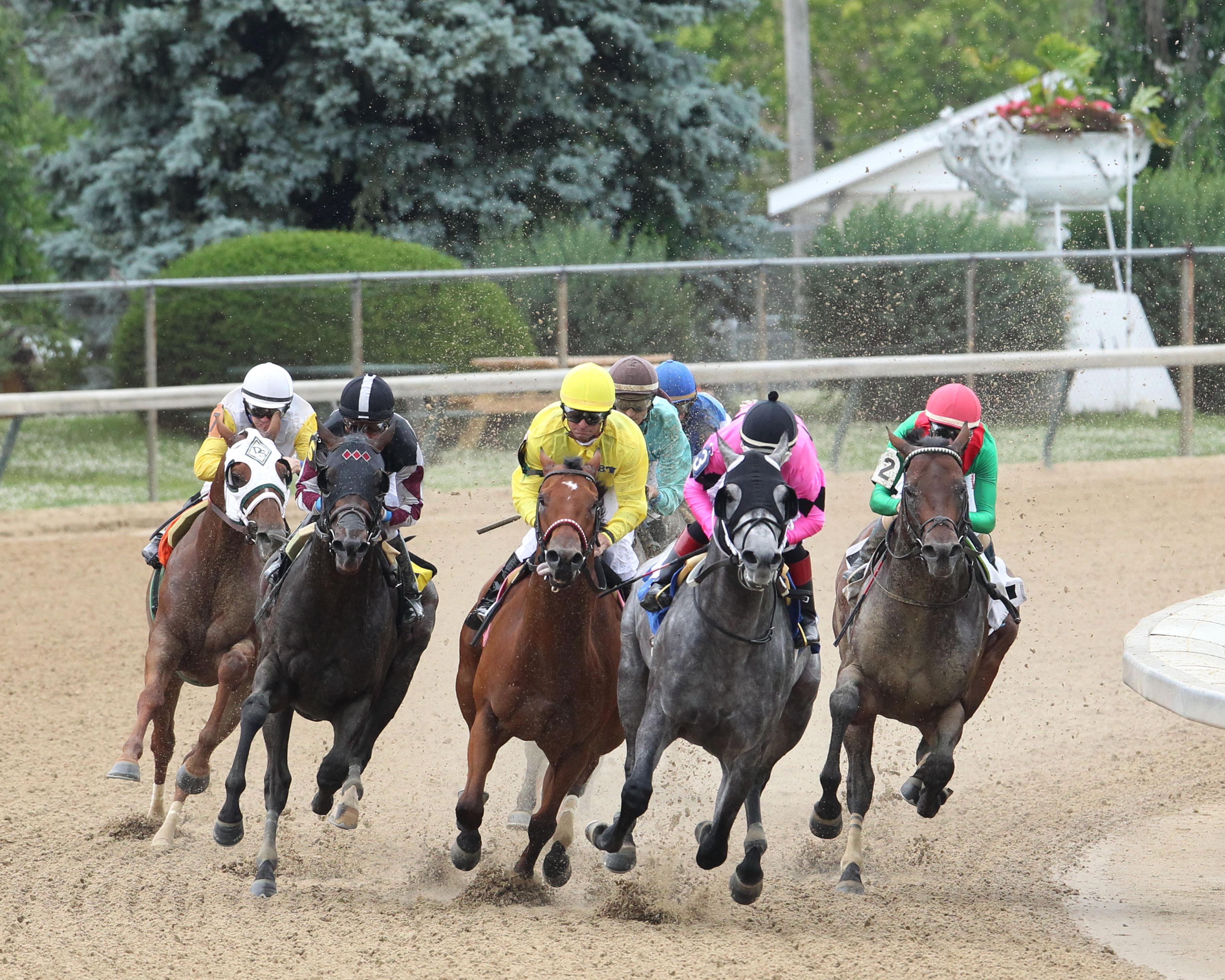Horses racing at Churchill Downs. (Courtesy of Churchill Downs)